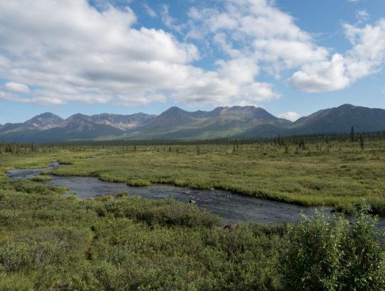 Alaska Trip 2015: Day Eleven